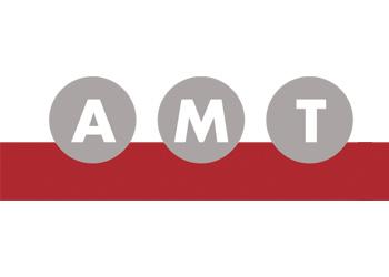 Logo Firma AMT Schmid GmbH & Co. KG in Sauldorf
